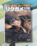 20050310-1.jpg
