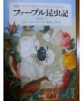 20051219-1.jpg